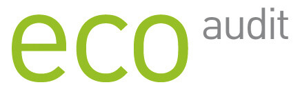 Logo eco audit